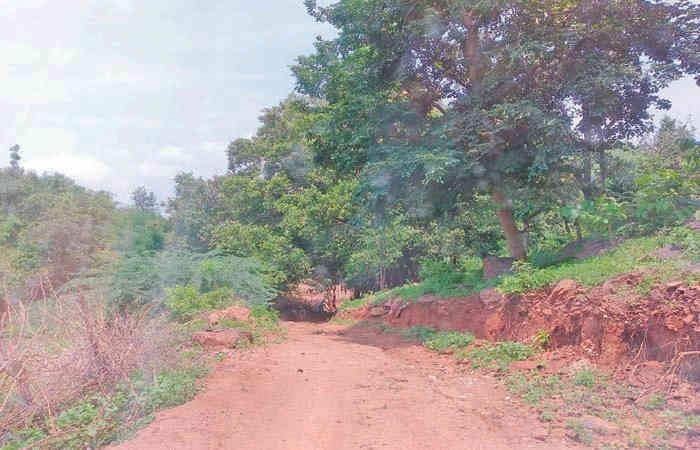 બનાસકાંઠા : આદિવાસી વિસ્તારમાં આવેલખાટી સિતરા ગામે પાકો રસ્તો ન હોવાથી ગ્રામજનો 7 કિમી સુધી ચાલવા મજબૂર
